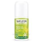 Acheter Weleda Déodorant Roll-on 24H Citrus 50ml à Bordeaux