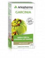 Arkogélules Garcinia Gélules Fl/45 à Bordeaux