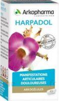 Arkogelules Harpagophyton Gélules Fl/150 à Bordeaux