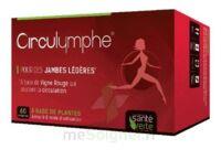 Santé Verte Circulymphe Triple Actions B/60 à Bordeaux