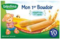 Bledina Mon 1er boudoir (6x4 biscuits) à Bordeaux