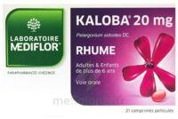 KALOBA 20 mg Cpr pell Plq/21 à Bordeaux
