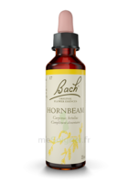 Fleurs De Bach® Original Hornbeam - 20 Ml à Bordeaux