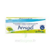 Boiron Arnigel Gel T(alumino-plastique)/45g à Bordeaux