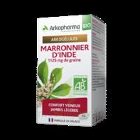 Arkogélules Marronnier D'inde Bio Gélules Fl/45 à Bordeaux