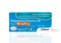 MAGNESIUM/VITAMINE B6 MYLAN 48 mg/5 mg, comprimé pelliculé à Bordeaux